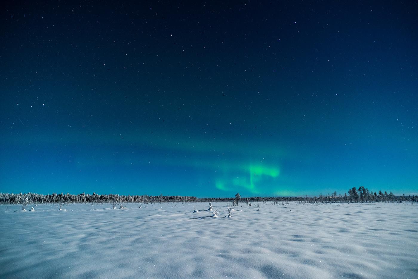 Photo d'une aurore boréale verte.