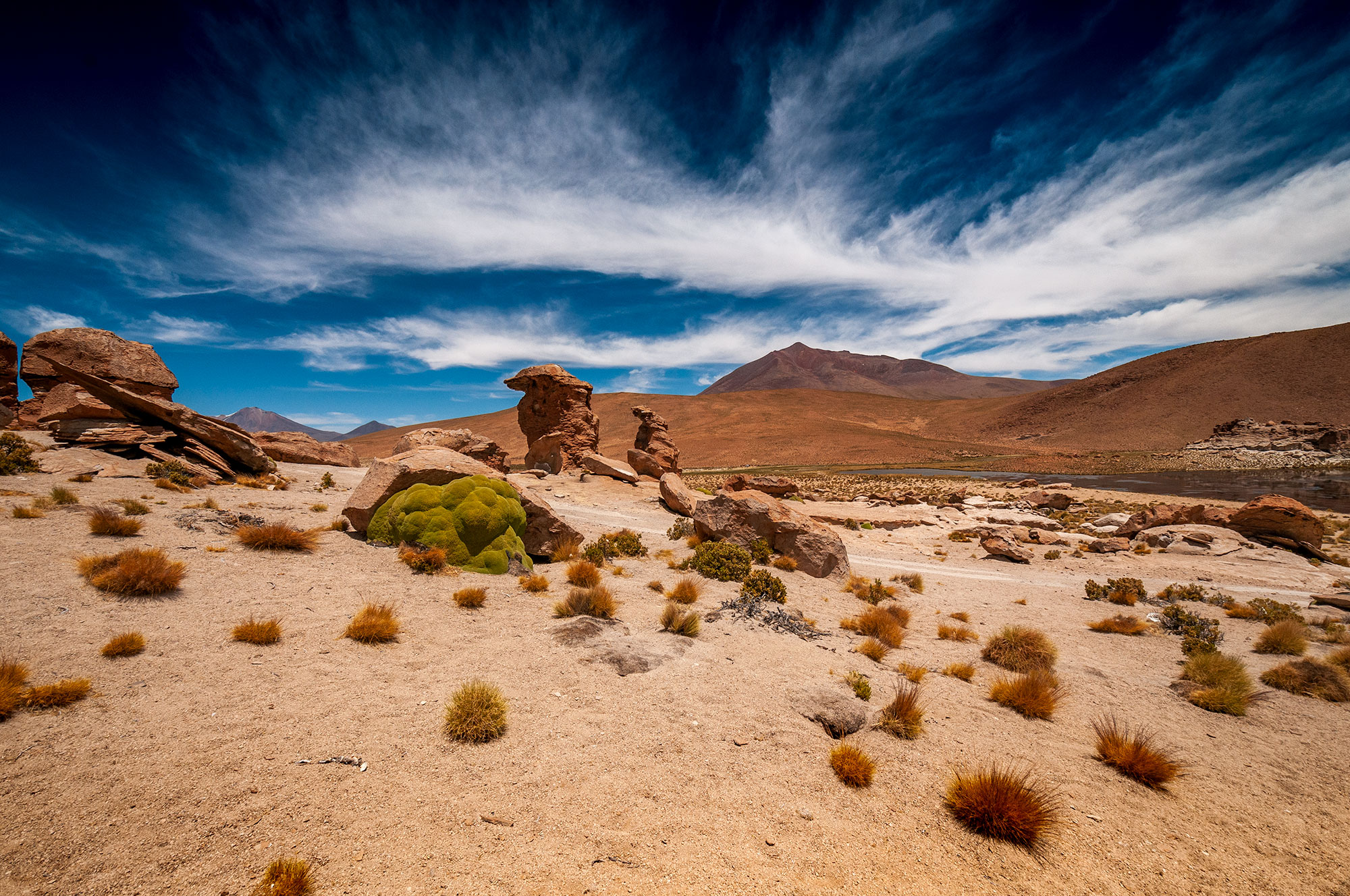 Photo en couleur de l'Altiplano bolivien.