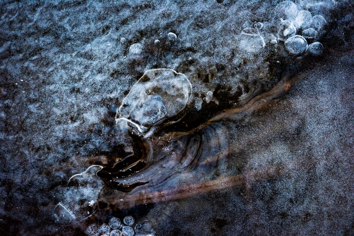 Macro photography of a frozen pond, located in Lausanne, Switzerland.