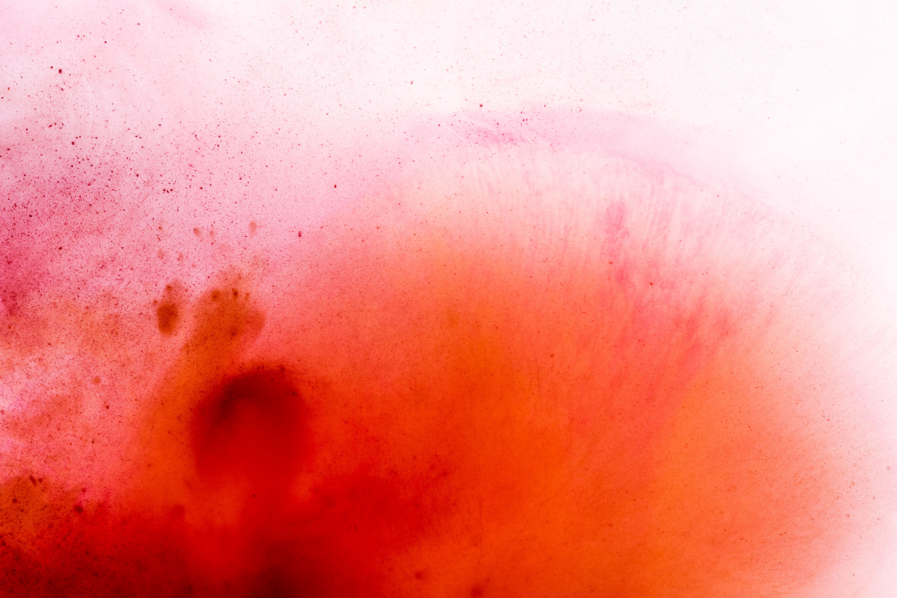 Minimal art photography made of orange and red watercolour. Image by Jennifer Esseiva.