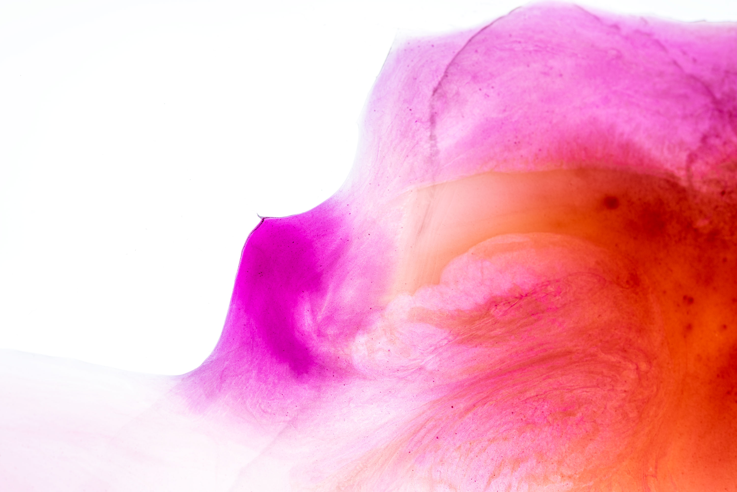 Abstract photography made of orange and pink watercolour. Image by Jennifer Esseiva.