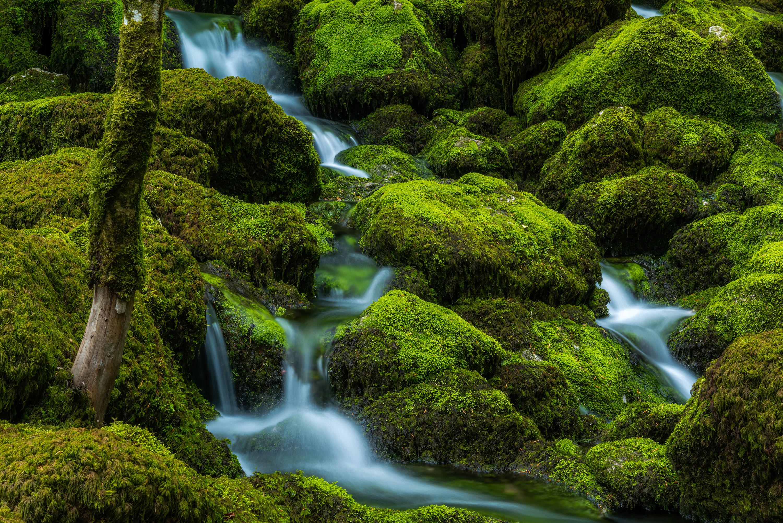 Close up river landscape photography, in Switzerland. Image by Jennifer Esseiva.