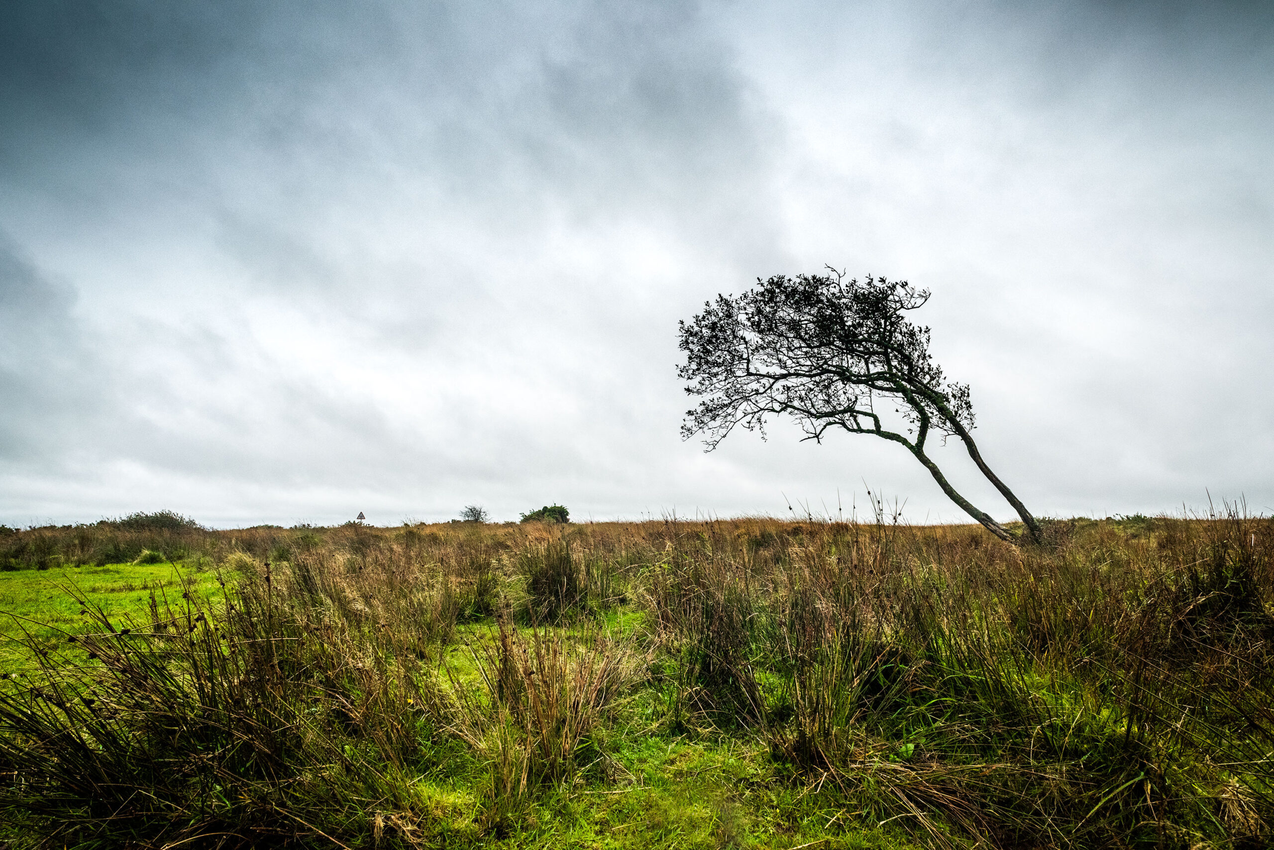 Dramatic and moody landscape photography. Image by Jennifer Esseiva.