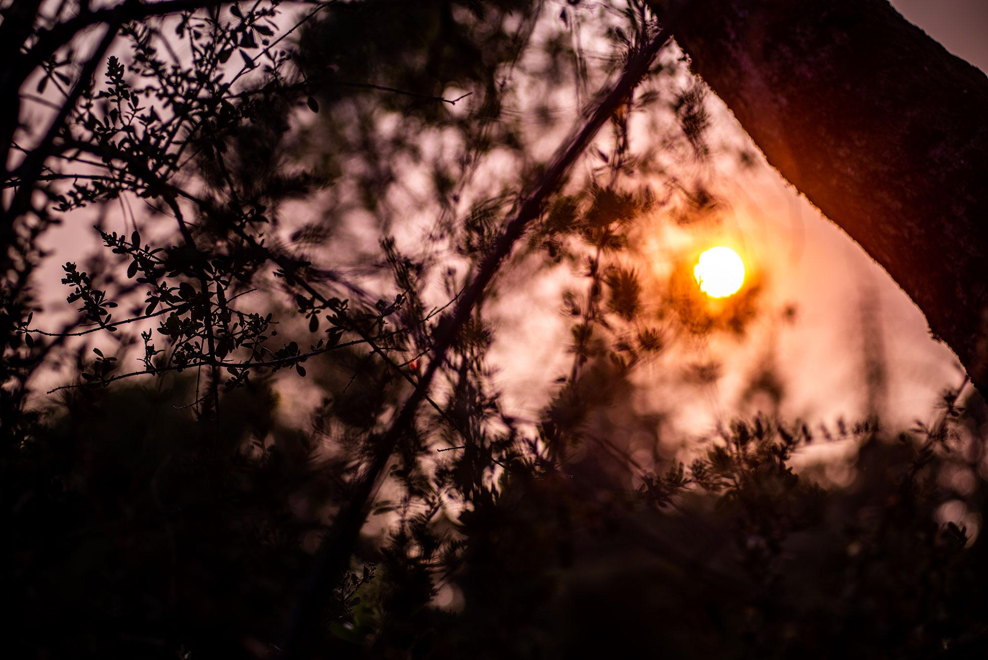 Sunset photography at in California near Yosemite National Park taken by landscape photographer Jennifer Esseiva.
