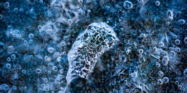 Macro photography of frozen water